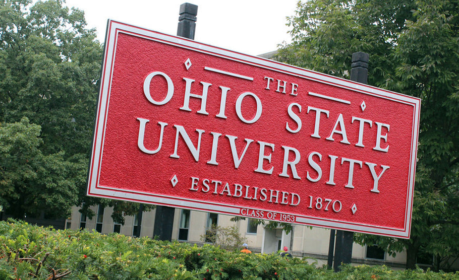 'The' Ohio State University wants to trademark the word 'THE'