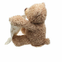 Peek a Boo Plush Teddy Bear - FREE SHIPPING TODAY!!