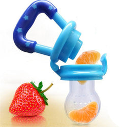 Fresh Food & Fruit Feeding Pacifier