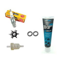Outboard Engine Service Kit for 4HP 2-Stroke 4M for Mercury Mariner Outboard