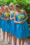 Simple Sweetheart A-line Blue Bridesmaid Dresses Summer Dresses Z1424