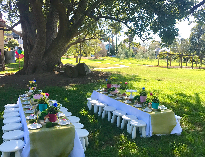 Trolls Movie inspired Kids Party at Sydney Inner West Park