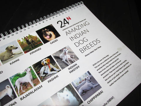 2018 Calendar is here, for all the animal lovers!