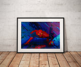 Spiderman Posters