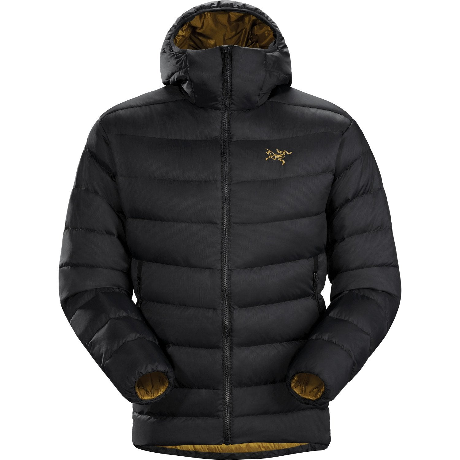 Arc'Teryx Thorium AR Hoody in Black colour. Front View shown fully zipped up