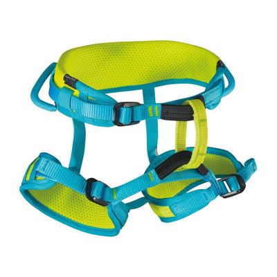 Edelrid Finn II Kids Harness blue and green