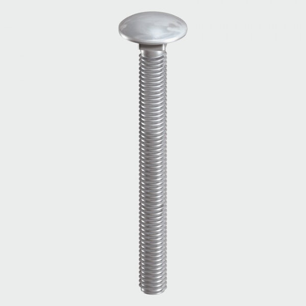 Carriage Bolt - Stainess Steel