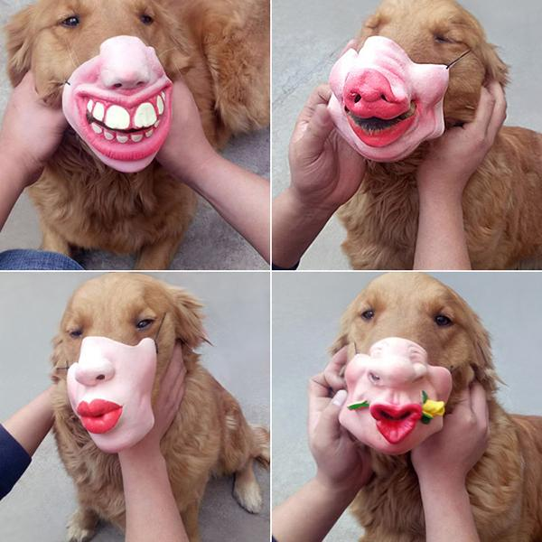 Dog Masks Pet Entertainment Spoofs