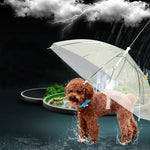 Pet Dog Umbrella Raincoat With Leash