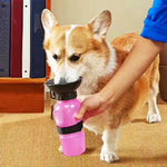 Pet Dog Drinking Water Mug