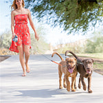 Dual Doggie 2 Dog Retractable Leash - 50 pounds per dog leash