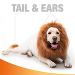 Original Lion Mane for Dog Funny and Realistic