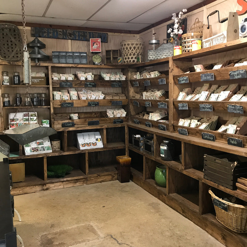 Our Seed Corner