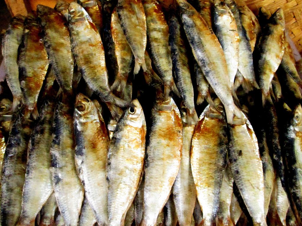 Palawan Dried Fish Tuyo Daeng Bulad