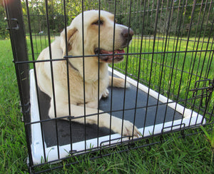 Deluxe Crate Mat - Chew and Dig Proof