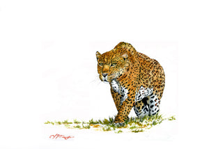 The Hunter (Leopard art)
