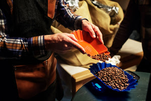 Sorting Roasted Coffee Beans