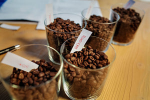 Roasted single origin coffee beans