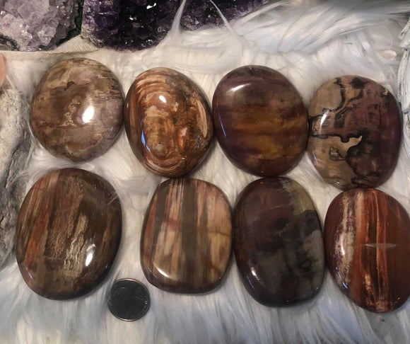 Petrified wood flat palm stone - Angel Eye Spiritual Shop