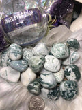 Tree agate tumbled - Angel Eyes Shop