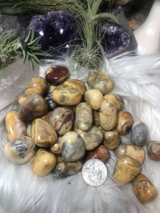 Crazy lace agate Tumble - Angel Eye Spiritual Shop