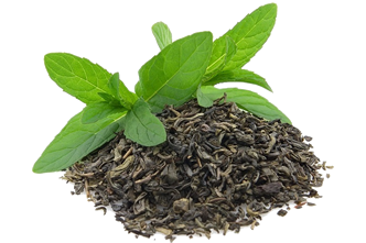 Green_Tea_Extract_large