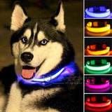 Pet Dog Collar LED