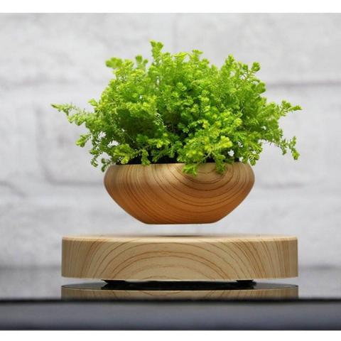 MAGNETIC LEVITATING POT FOR AIR BONSAIS & SMALL PLANTS