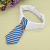 Image of Cat Tie/Necktie Collar