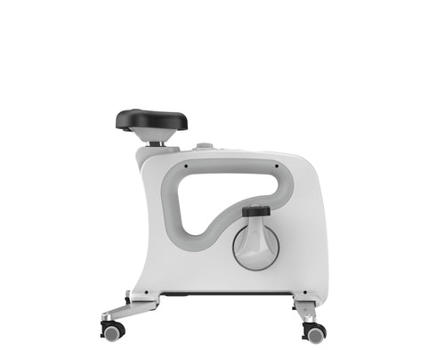 Flexispot Exercise Bike Desk Under V9U