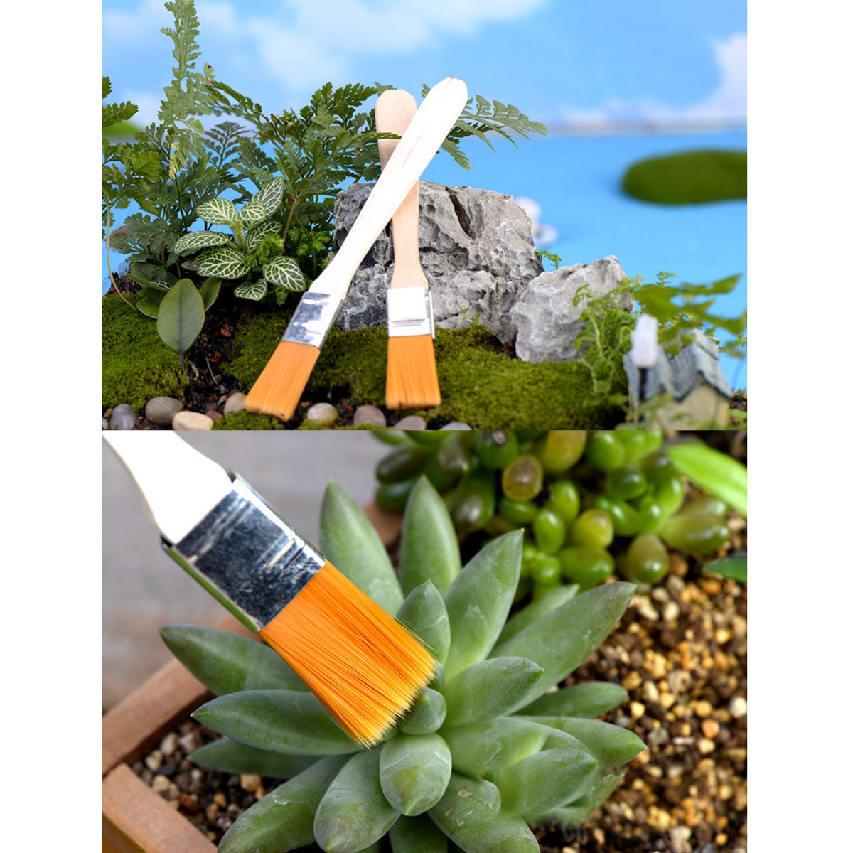 Succulent Planting and Care Tool Set