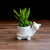 White Ceramic Tortoise Planter for Succulents