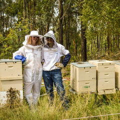 Beginner beekeeper: where should I start??