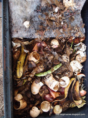 Worm farm compost