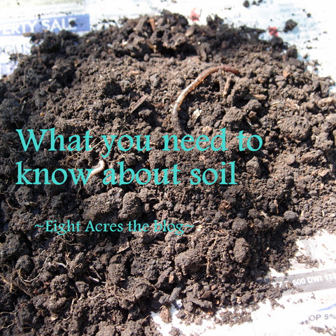 What you need to know about soil