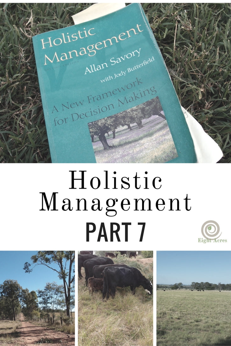 Holistic management - part 7: completing the feedback loop
