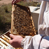 Natural Beeswax for crafts, beauty products and candle-making