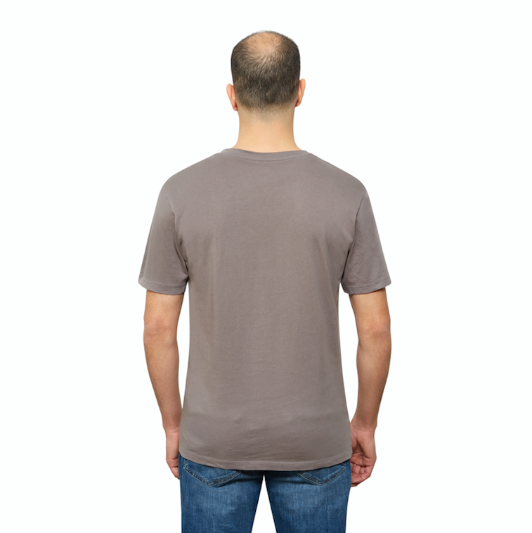 Grey Organic Signatures T Shirt for Men, V Neck, Short Sleeve (back view)