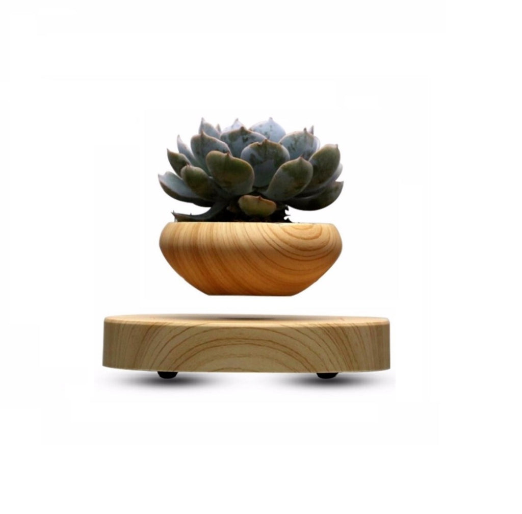 Wood Levitating Pot