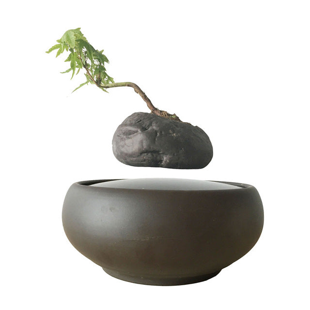 Levitating Pot Creative Eccentric Unique