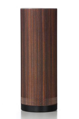 smart pillar speaker-1