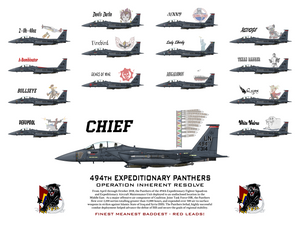 494th Expeditionary Panthers