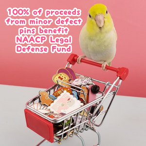 $1100 raised so far for NAACP Legal Defense Fund!
