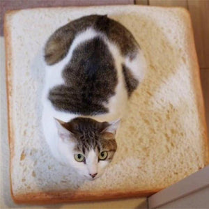 Bread Shaped Pet Bed