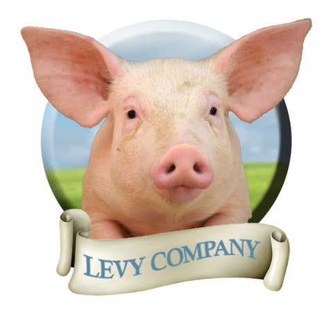 Levy Farm, providing safe transitional housing, continuing education, guidance, and employment