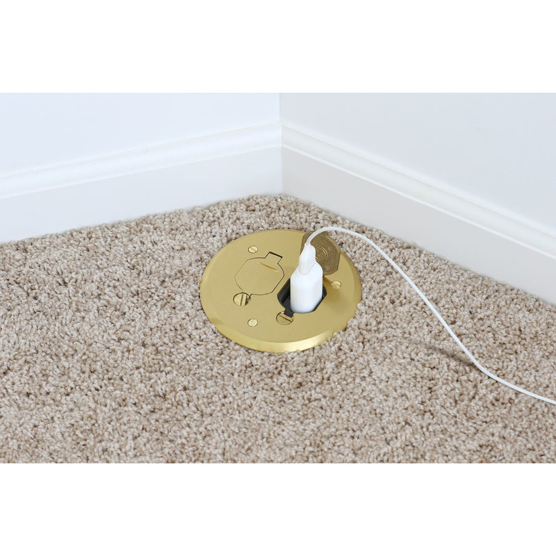 Lew Electric PBR1-FPB on Carpet