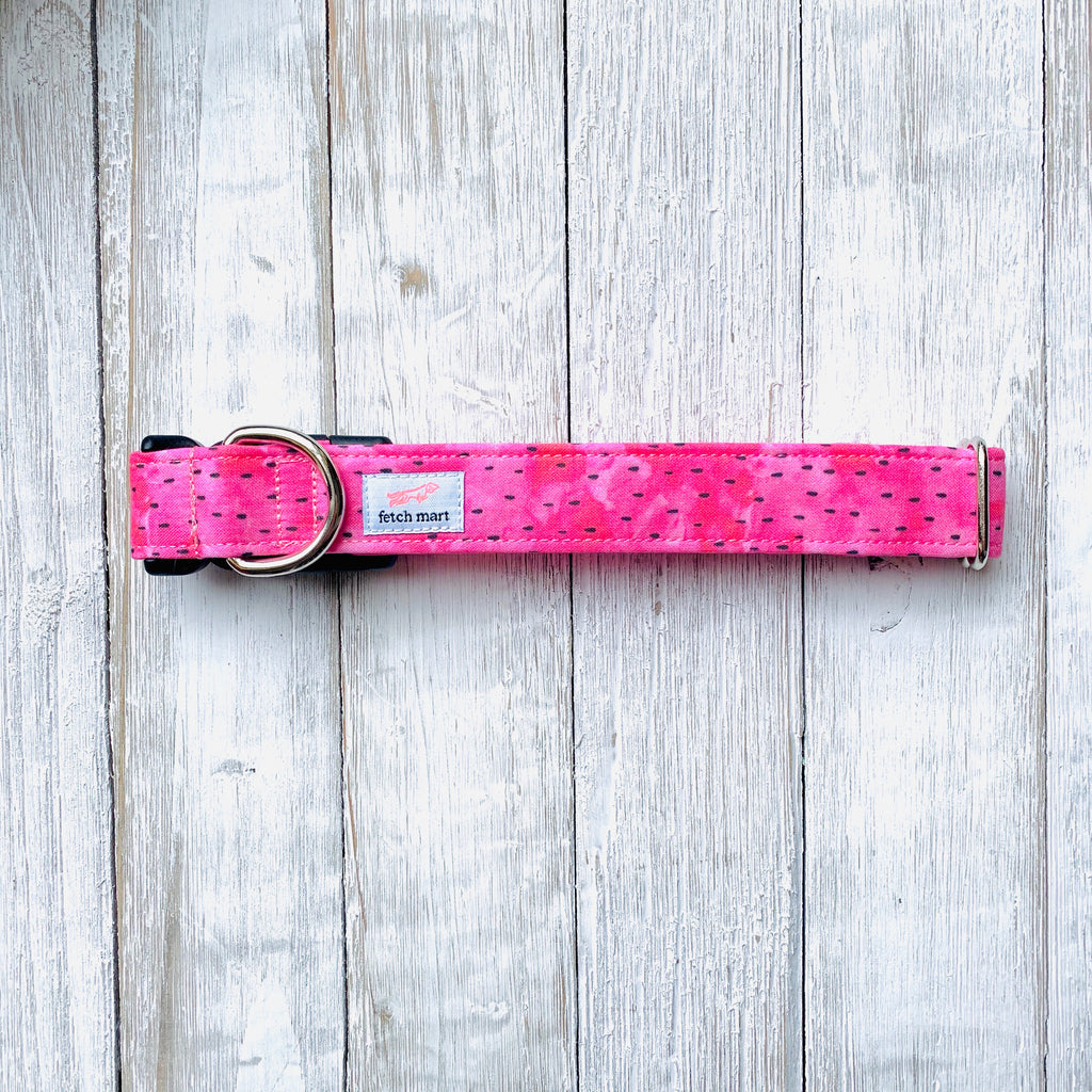 Watermelon Seeds Collar