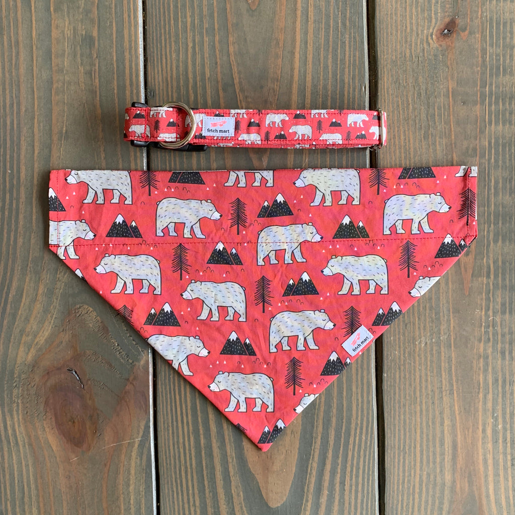 Kodiak Bears in Red Bandana