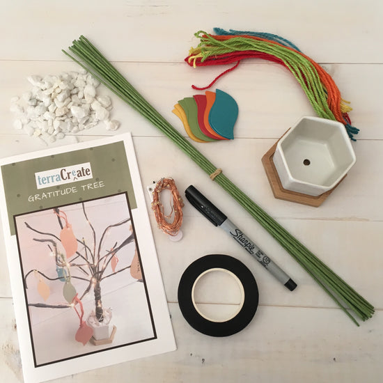 Arts and crafts supplies to build a gratitude tree from the Terra Create subscription.
