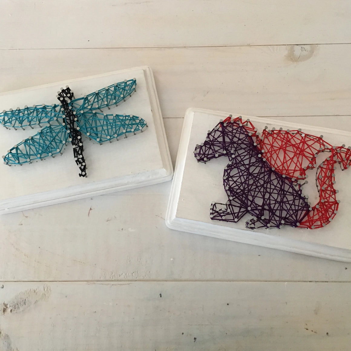 DIY String Art Kit - Dragons & Dragonflies